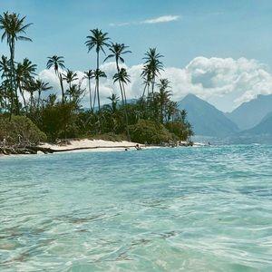 🍹🍍❤️ Maui 📷  🌿🌸 🌈